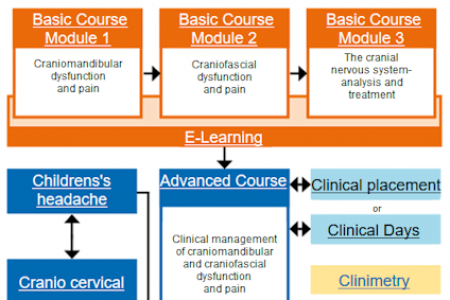 courses_overview_424.png
